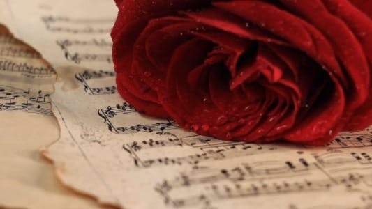 Thumbnail for Putting Red Rose onto Vintage Sheet Music