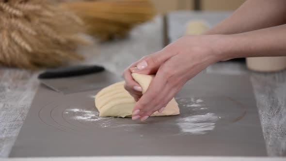 Woman Hands Rolls Bread Rolls Dough. Making Yeast Buns.