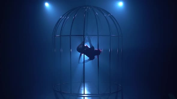Thumbnail for Girl in a Cage Stunts on a Hoop in a Dark Room. Blue Smoke Background. Silhouette. Slow Motion