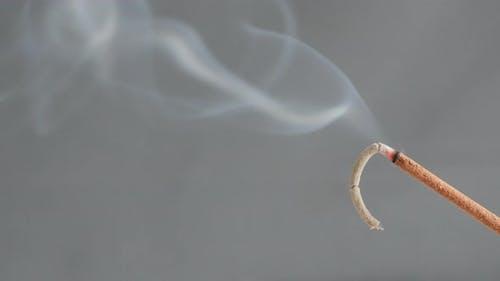 Biotic material burning for meditation purpose 4K 2160p 30fps UltraHD footage - Close-up of fragrant