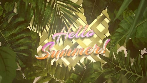 Text Hello Summer and closeup tropical tree on summer background