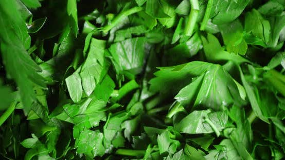 Chopped Herbs Fresh Parsley Rotates Slowly.