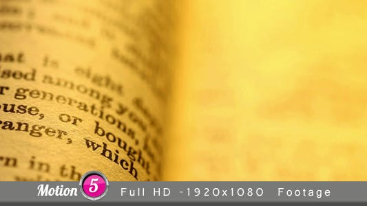 Thumbnail for Bible 5