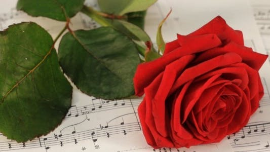 Thumbnail for Red Rose On Classical Sheet Music