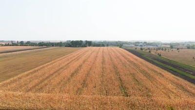 Field Landscapes