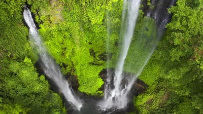 Rainforest and Jungle at the Iguazu Waterfall in Brazil. Aerial View
