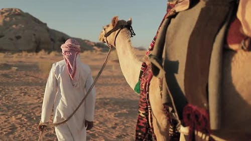 Bedouin man Crossing The Desert of Wadi Rum with a camel, Jordan.