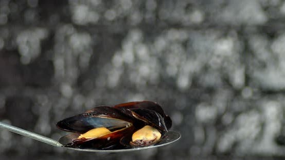 Thumbnail for Hot Boiled Mussels on a Spoon with Hot Steam.