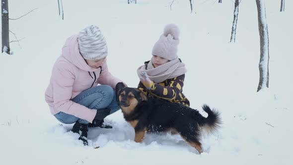 Family with Active Dog in Winter