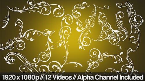 Flower Flourish Growing - 12 Styles With Alpha