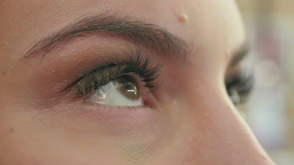 Thumbnail for Professional Artist Applying Eye Shadows on Face