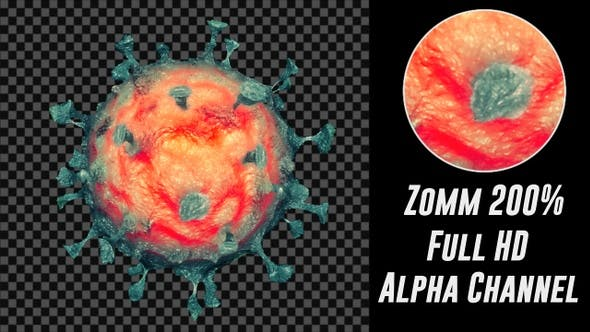 Thumbnail for Coronavirus Loop V7