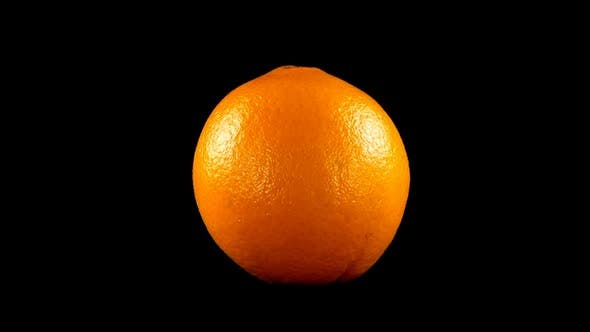 Thumbnail for Oranges on a Black Background 10
