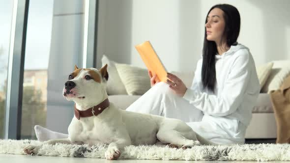 Attractive Girl Is Reading Book with Her Purebred Dog in Modern Apartment. Hobby, Animals and