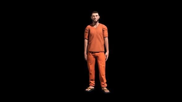 Thumbnail for Prisoner