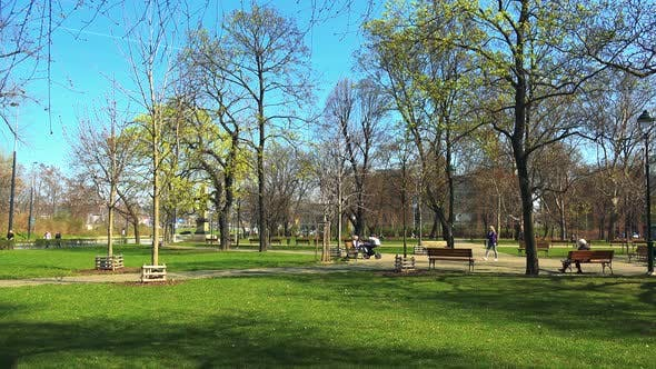 Thumbnail for A Beautiful Green Park on a Sunny Day with People