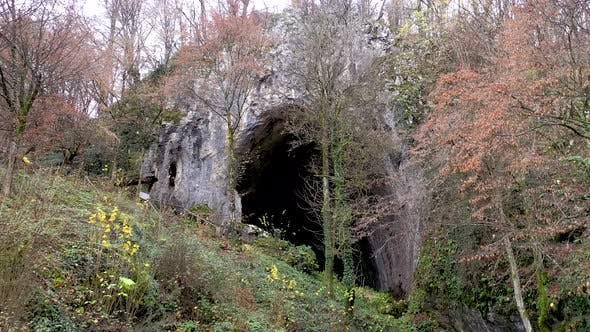 Thumbnail for Flying Above a Monumental Cave Entrance Among Trees. Meziad, Romania