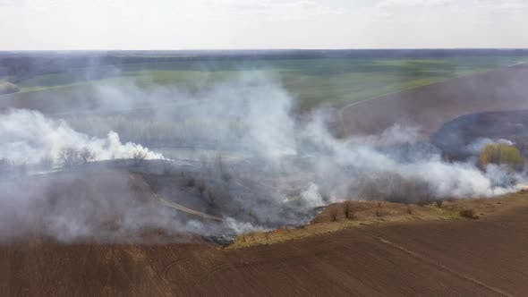 The Big Extensive Fire in the Field.