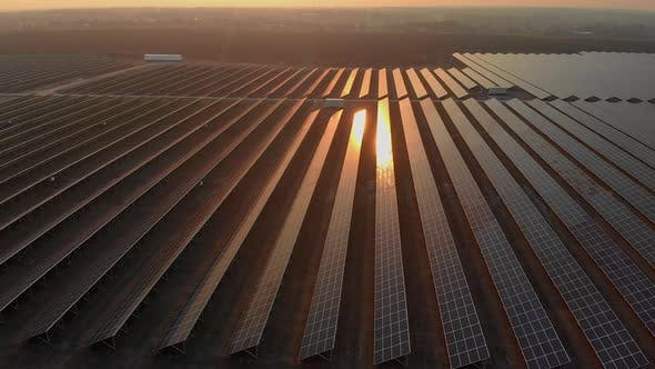 Aerial Drone View Into Large Solar Panels at a Solar Farm at Bright Sunset. Solar Cell Power Plants