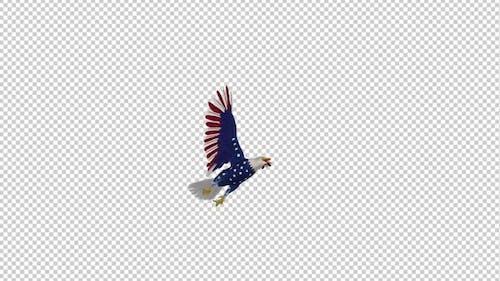 American Eagle - USA Flag - Flying Loop - Down Angle II