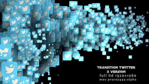Transition Twitter