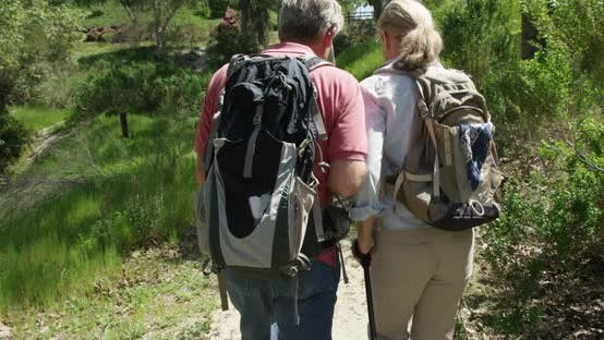 Thumbnail for Active senior couple trekking on trail