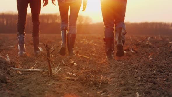Three Farmers Go Ahead on a Plowed Field at Sunset