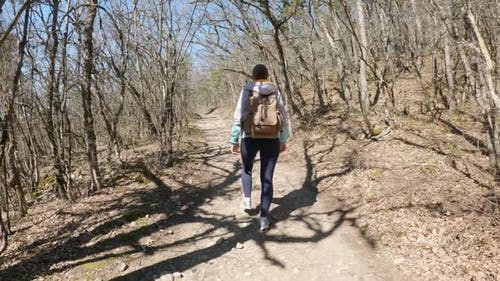 Young Trendy Woman Walking on Summer Forest Path Trail