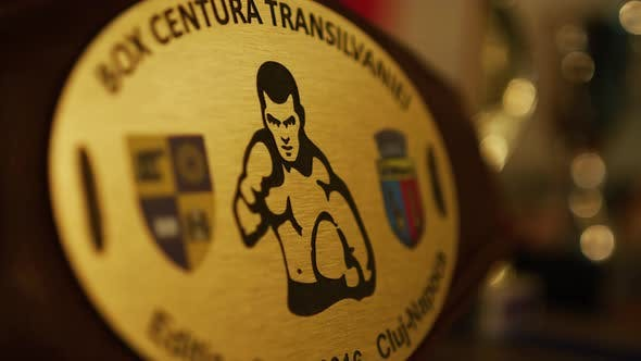 Close up view of a championship belt