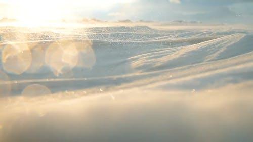 Arctic Storm, Arctic Blizzard, Snow Drift, High Wind, white storm.