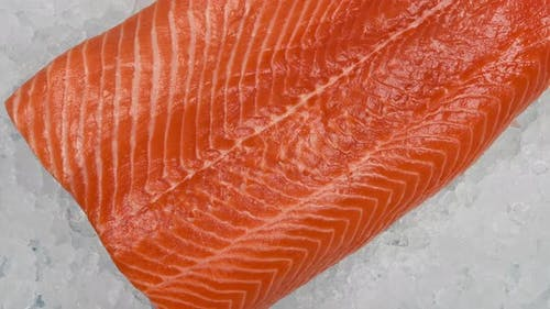 Close up raw salmon fish fillet on crushed ice