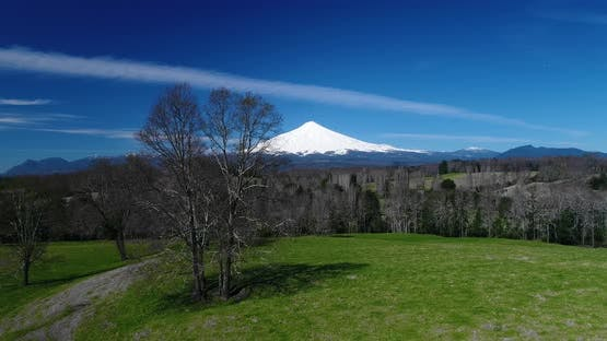 Lush Patagonia Valley Volcano And Flying Birds Background
