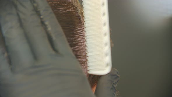 Cover Image for Barber Brushing Client's Wet Hair in Sections