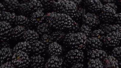 blackberry close up rotating. Fresh Ripe organic blackberries