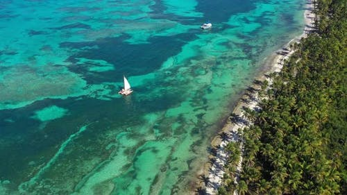 Aerial View From Drone on Tropical Beach with Palm Trees and Speed Boats Shipping in Caribbean Sea