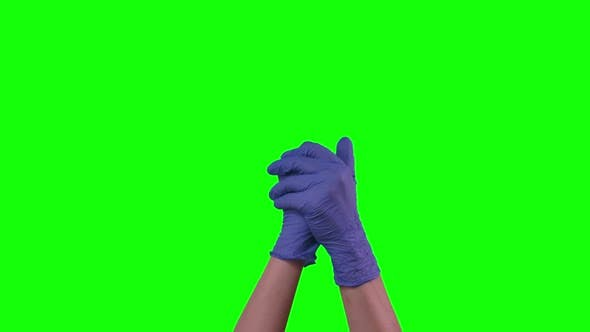 Thumbnail for Hands in Blue Medical Gloves Is Processing and Thoroughly Wipe Disinfectant