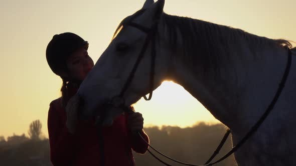 Thumbnail for Horsewoman Is Standing in the Field and Stroking the Horse a Sunset