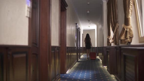 Thumbnail for Back View of a Brunette Walking Along the Hotel Corridor with the Trolley Suitcase. The Camera Moves
