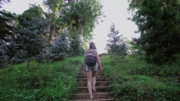 Cover Image for A Girl with a Backpack Climbs Up the Old Stone Stairs Through the Coniferous Park on the Mountain