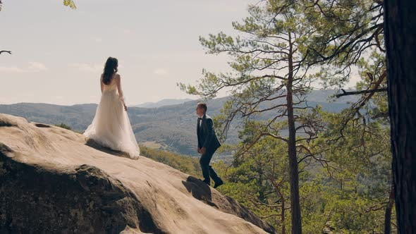Thumbnail for A Happy Couple of Brides Stand on the Mountain with Their Backs To the Camera and Look Into