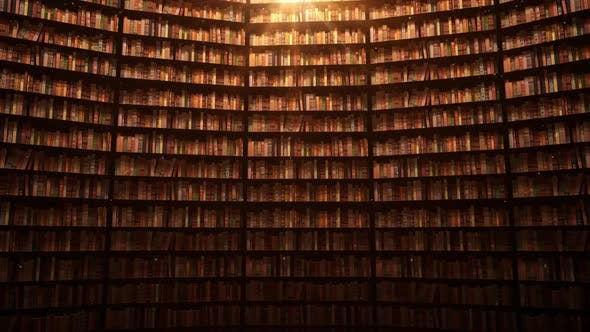 Cover Image for On The Library Shelf 08 HD