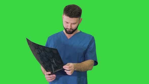Thumbnail for Doctor Having a Look at Mri Brain Scan on a Green Screen, Chroma Key.