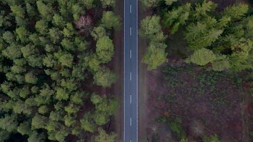 Aerial Autumn Road