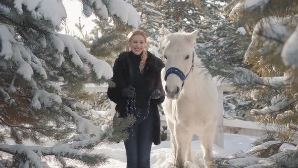 Thumbnail for Portrait of Pretty Blond Girl with Thoroughbred White Horse Near the Fence Close Up. Young Woman