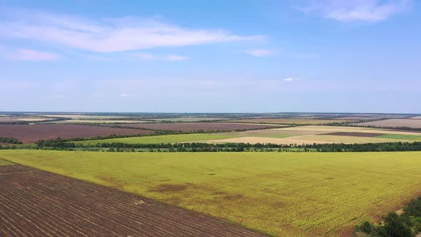 Autumn agricultural fields. Aerial view.