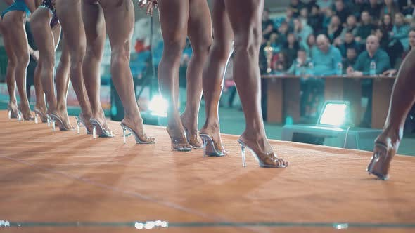 Thumbnail for Beautiful Girls Who Are Engaged in Fitness, During the Beauty Contest. They Perform on Stage in