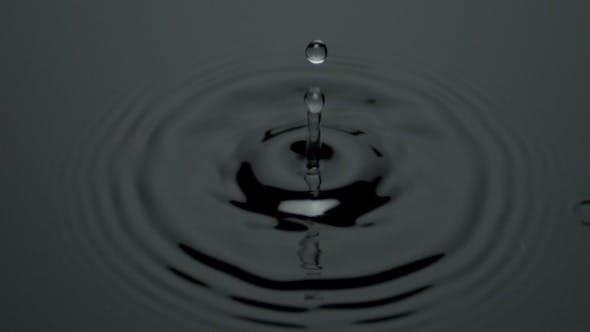 Thumbnail for Water Drop Black