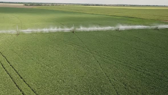 Thumbnail for Spraying the Field with Water