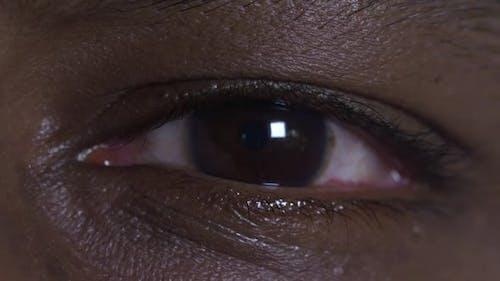 Asian Indian Brown Eye