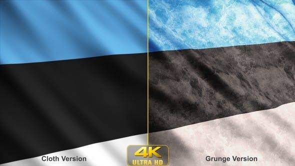 Thumbnail for Estonia Flags